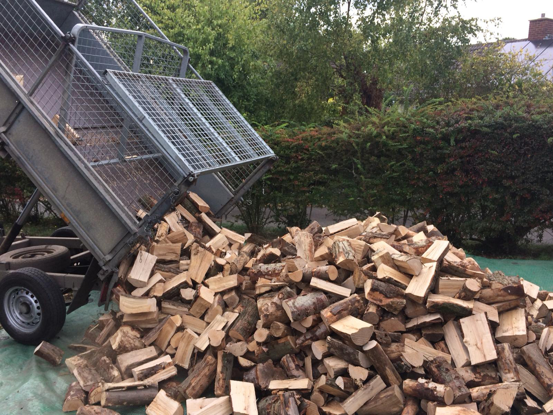 Delivery load of cut logs Cambridgeshire HD